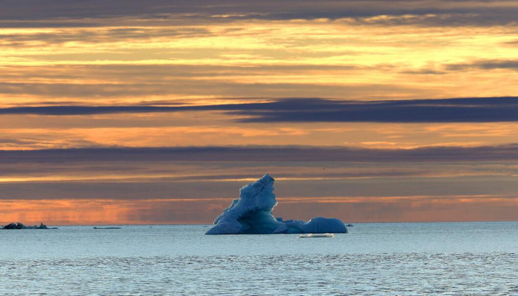- Man har lenge lett etter Synechococcus i Polhavet uten å finne nevneverdige forekomster. Det er dermed i seg selv interessant at vi fant store forekomster nord-vest for Svalbard, skriver forskerne. (Foto: Cordier Sylvain / NTB scanpix)