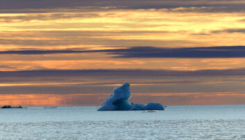 Nye bakterier beveger seg inn i arktiske farvann