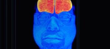 Slik kan vi se bilde av hva som skjer i hjernen
