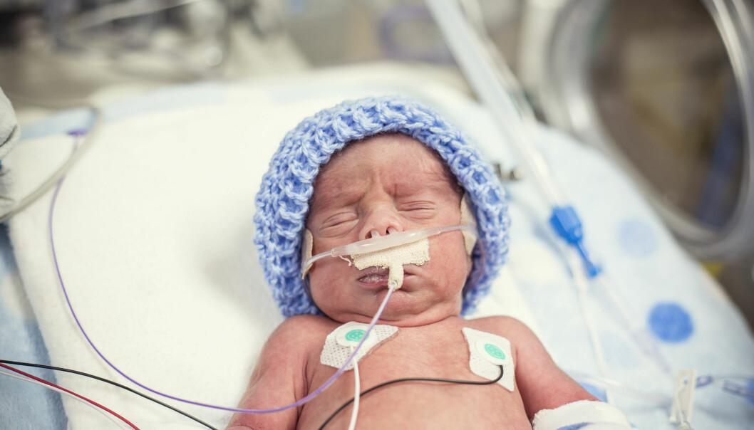 Svært for tidlig fødte barn la raskere på seg etter fødsel da de fikk mer næring enn retningslinjene anbefaler. (Foto: Shutterstock)