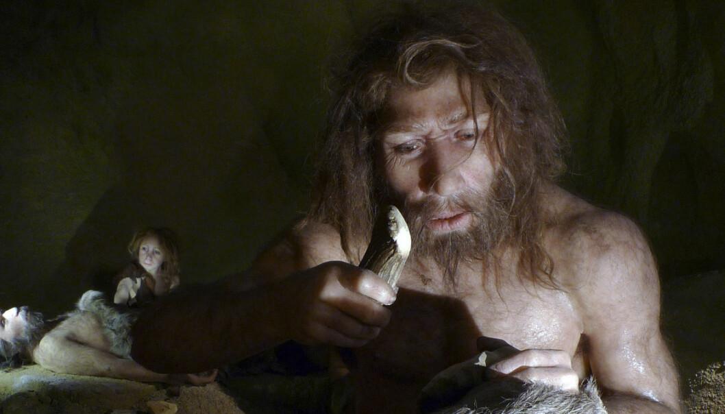 Hva spiste neandertalerne?