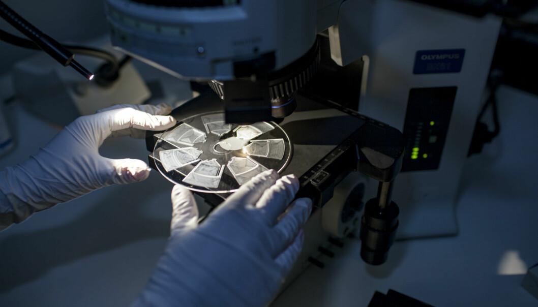 Den nye analysemetoden skal gjøre det enklere for leger å gi pasienter trygg og riktig behandling med antibiotika. (Foto: Remy Eik-Nikolaisen)