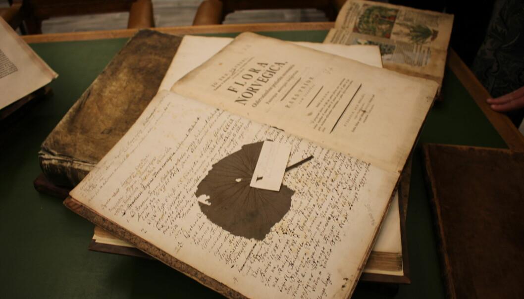 Gamle bøker gir svar om plantebruk i vikingtid, middelalder og fram til i dag. Her er boken Flora Norvegica, som ble utgitt av biskop Johan Ernst Gunnerus på 1700-tallet. (Foto: Dag Inge Danielsen, UiO)