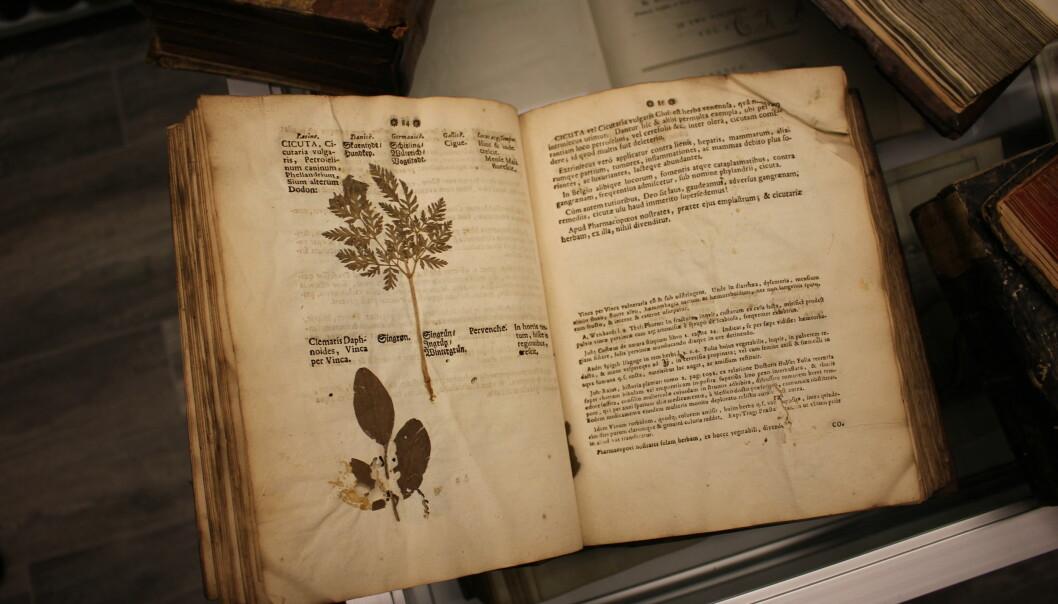 Denne utgaven av <i>Dioscorides</i> ble trykket i Tyskland i 1614 og har avsatt plass, slik at man kunne montere inn pressede planter. (Foto: Dag Inge Danielsen, UiO)