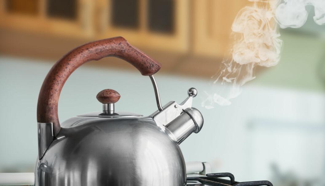Du kan trygt koke vannet flere ganger hvis du trenger en ekstra kopp kaffe. (Foto: OlegDoroshin / Shutterstock / NTB scanpix)
