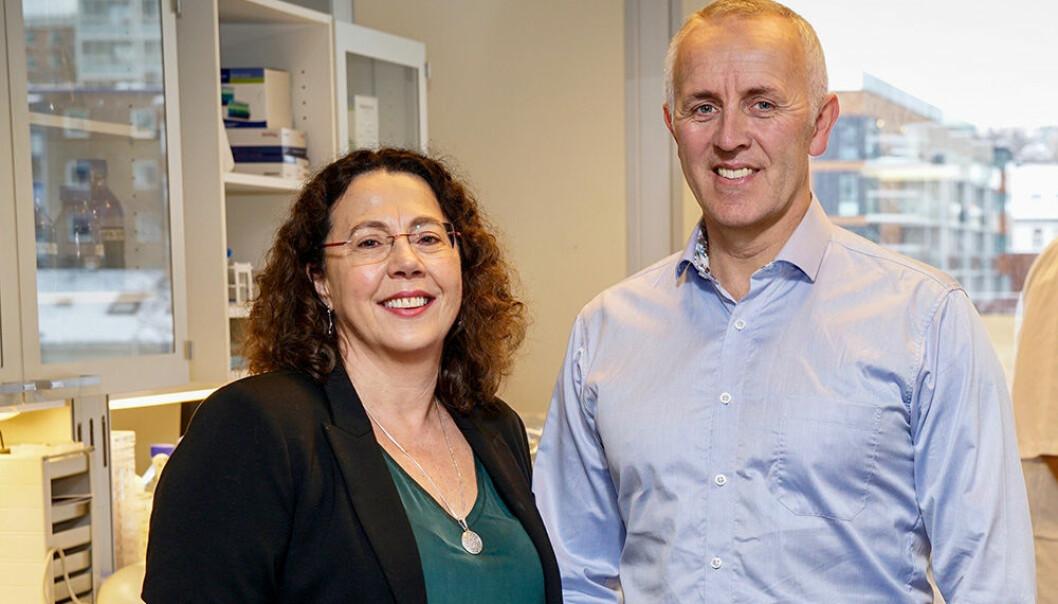 Marit Otterlei og Magnar Bjørås, begge professorer ved NTNU, skal forske på ny antibiotika. (Foto: Geir Otto Johansen)