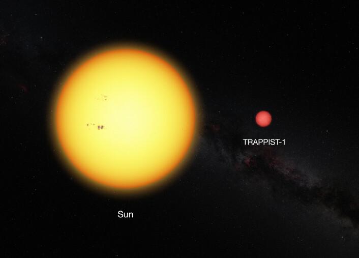 TRAPPIST-1 ved siden av vår egen sol. (Foto: ESO/CC BY 4.0)