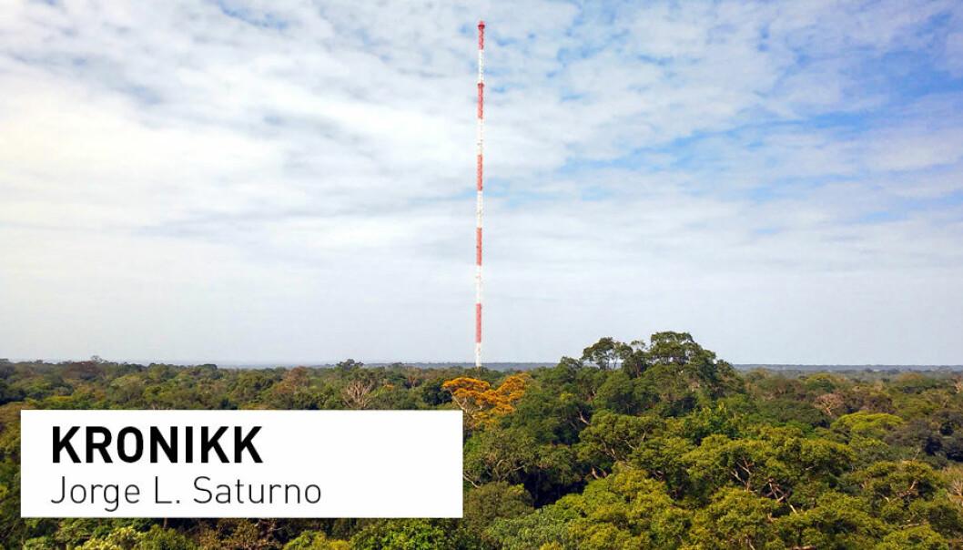- Amazonregnskogen er noenlunde karbonnøytral: Den gir fra seg like mye karbon som den tar opp. Den inneholder imidlertid rundt 200 milliarder tonn karbon i jord og vegetasjon. Hvis skogen dør, vil alt dette karbonet slippes ut i atmosfæren, skriver kronikkforfatteren. (Foto: Jorge L. Saturno / CC BY-SA 4.0)