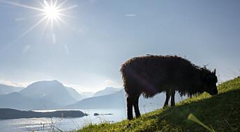 Debattinnlegg: Misvisende om ny inndeling av landskapstyper for Norge