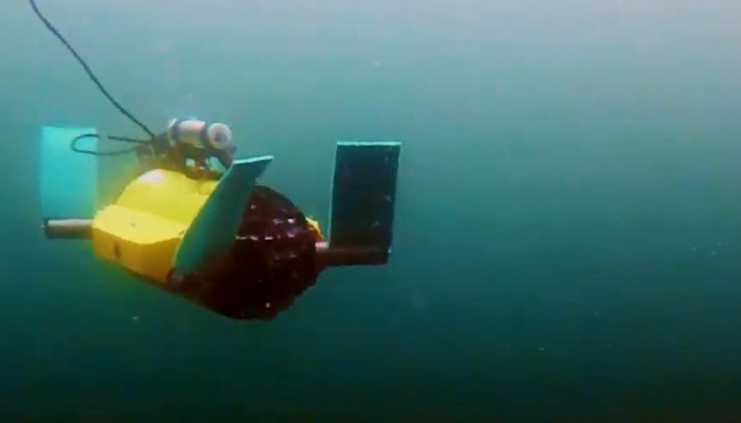 Denne undervannsfarkosten er testet ut i utviklingen av maskiner som skal fungere sammen med fisk. (Foto fra video: Sintef)
