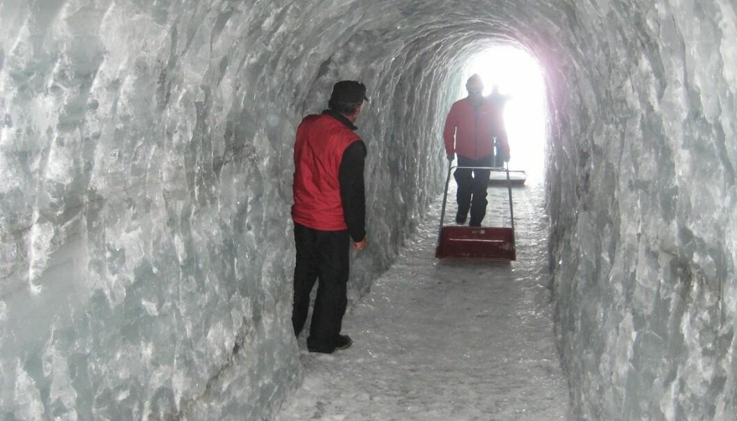 I Juvfonne er det hakket ut en tunnel i den gamle isen. Prøver herfra ble sendt til analysering. (Foto: Rune Strand Ødegård, NTNU)