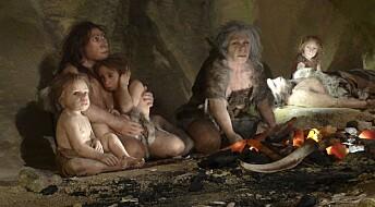 Neandertalerne levde i et mindre kjønnsdelt samfunn. Var det derfor de døde ut?
