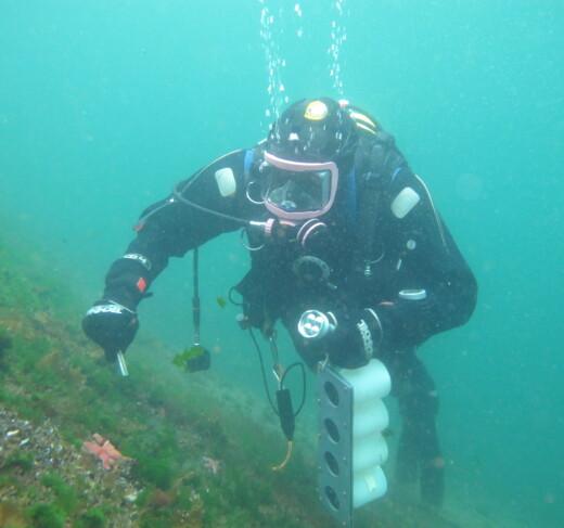 Alle bør ha rett til dybdedata for norskekysten
