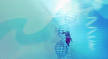 Bioteknologirådet: Vi bør forske på ny genteknologi, men ikke bruke den