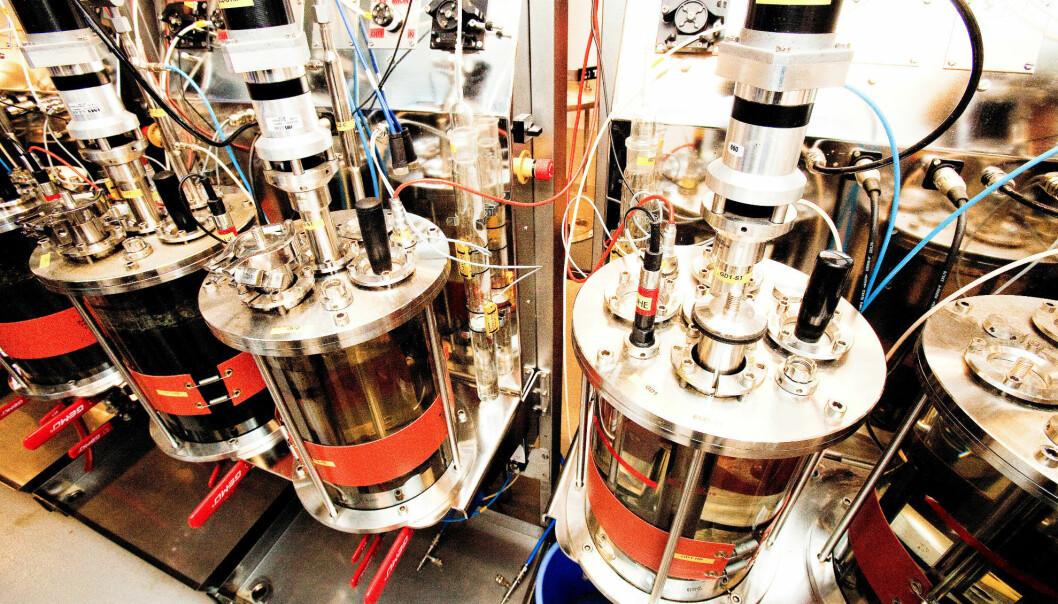Forskningssenteret Bio4Fuels skal blant annet bidra til å utvikle bærekraftig biodrivstoff.  (Foto: NMBU)