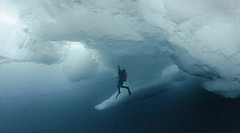 Ny utstilling ved UiT viser havis i endring