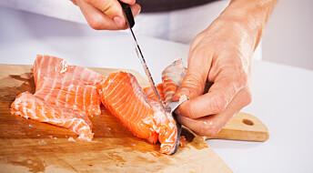 Er det trygt å spise rå villaks?