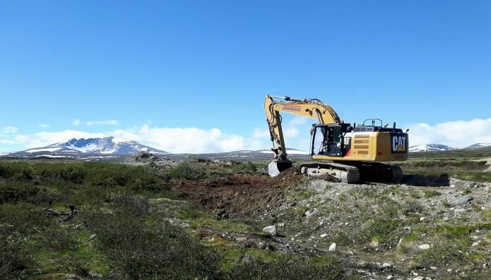 Her blir en veg fjernet av en gravemaskin, og vegetasjonstuer fra vegkanten blir plassert på den tidligere vegen. (Foto: Dagmar Hagen)