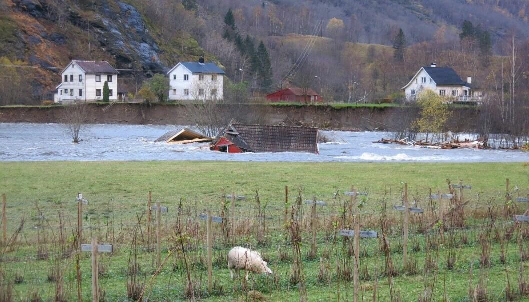 Etter flommen i oktober 2014 i Flåmselva i Aurland. (Foto: Svein Arne Vågane, NVE)