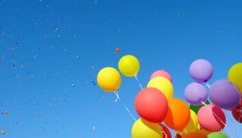 Så farlig er ballonger for sjøfugl