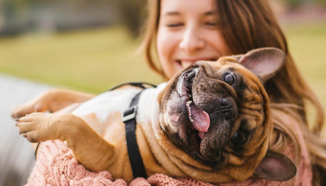 Har du og hunden samme lynne? (Foto: Shutterstock/NTB scanpix)