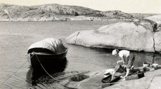 Så grundig undersøkte de Oslofjorden på 1950-tallet