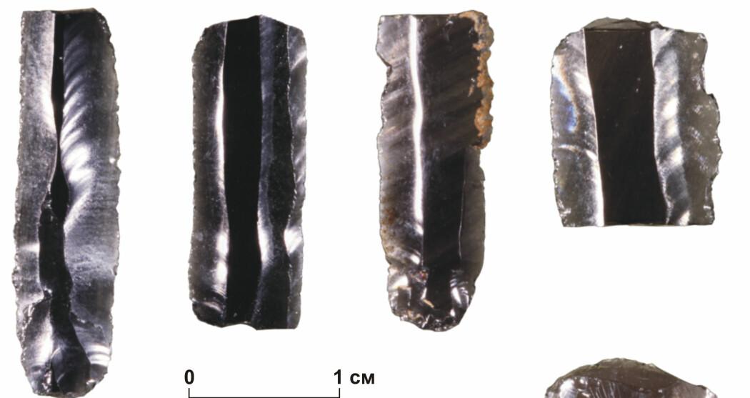 Bearbeidet obsidian ble brukt langt mot nord i steinalderen, selv om den ikke fantes der naturlig. Steinen er et ypperlig verktøy på grunn av de skarpe kantene. (Foto: Vladimir V. Pitulko mfl 2019)
