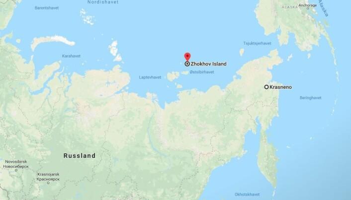 Øya Zhokhov ligger 76 grader nord. I steinalderen var den en del av fastlandet. Innsjøen Krasnoye ligger 150 mil unna i luftlinje. (Illustrasjon: Google maps)