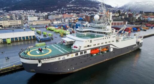 Norske forskere observerte 1200 hval i Antarktis