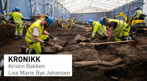 Vi kan ikke forvente at utbyggerne finansierer arkeologisk forskning