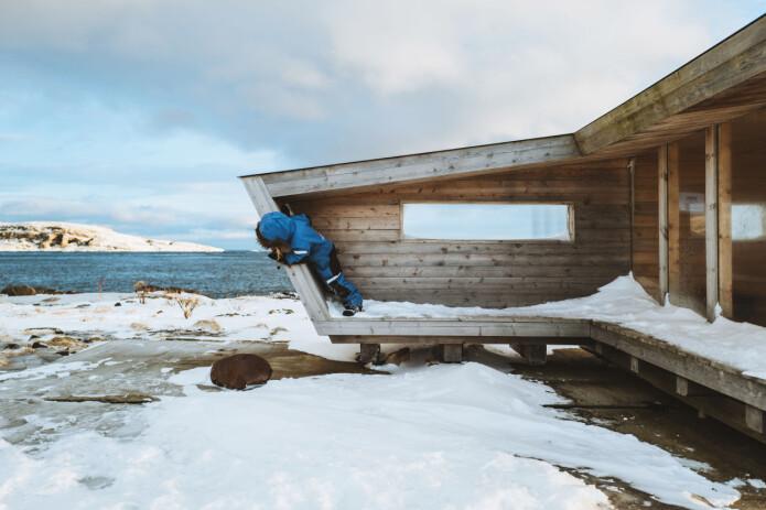 Arkitektkontoret Biotope bidrar til å koble fugleturisme og stedsutvikling i Vardø. (Foto: Mariel Lødum)