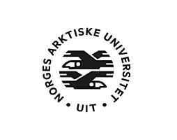 Førsteamanuensis / førstelektor / universitetslektor i maritim sikkerhetsledelse