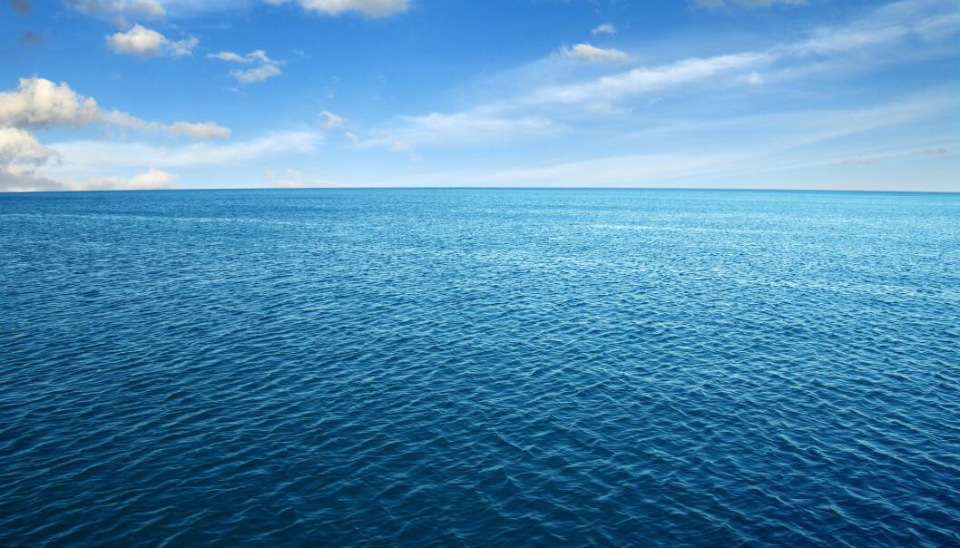 Havoverflaten på en rolig dag. Alle disse små bølgene er ikke selvstendige ting som eksisterer hver for seg - de er en bevegelse i feltet. (Bilde: irin-k / Shutterstock / NTB scanpix