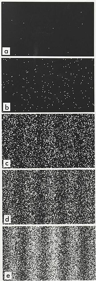 Dette viser hvordan et bølgemønster bygger seg opp over tid når du skyter individuelle elektroner mot en dobbelspalte. Det siste bildet viser et klart interferensmønster. (Bilde; Belsazar/CC BY-SA 3.0)