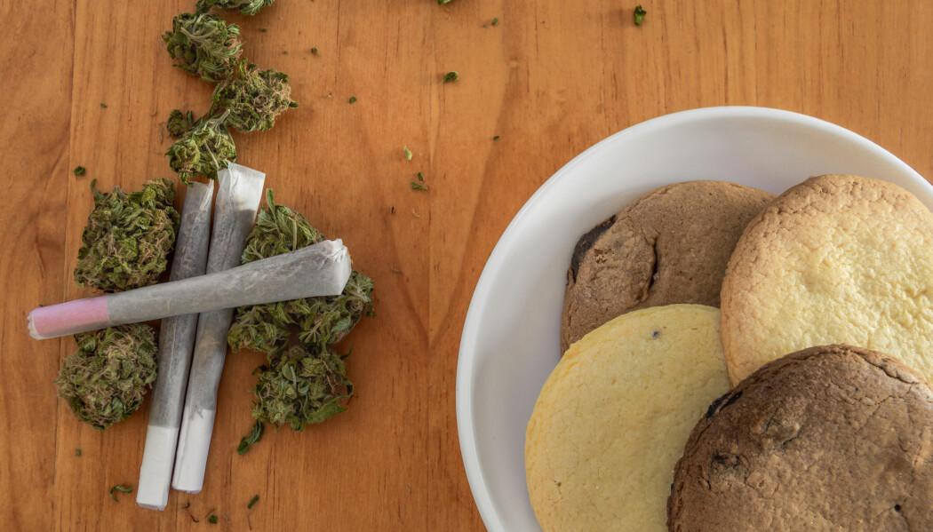 Kan legalisering av marijuana få oss til å spise mer snacks? (Foto: Kemedo / Shutterstock / NTB scanpix)