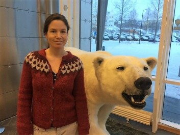 Miljøgiftforsker Heli Routti er førsteforfatter av studien som viser sammenheng mellom fettlagring og miljøgifter. (Foto: Elin Vinje Jenssen / Norsk Polarinstitutt)