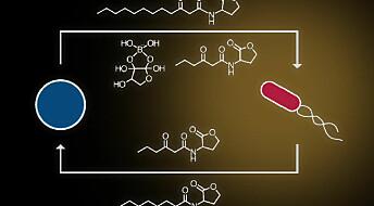 Kunstige celler kan bli vår nye antibiotika