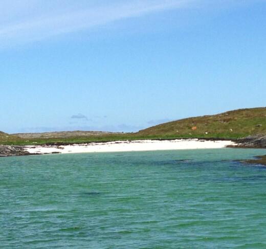 Hva er nytteverdien av å kartlegge marin natur egentlig?