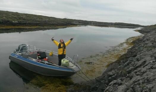 Søre Sunnmøre først ute med å kartlegge marint miljø etter nytt system