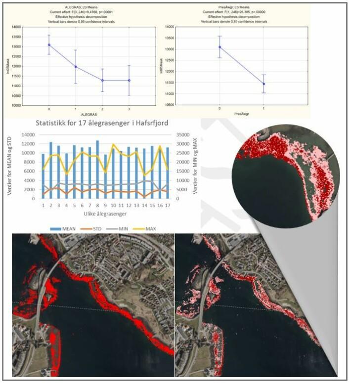 Øverst: Figurene viser analyse av intensitetsdata mot tettheter av ålegras (øverst, til venstre) og tilstede/fravær (øverst, til høyre) når kun data fra områder grunnere enn 3 m og kun for områder med høye tettheter av intensitetsdataene var tatt med. Midten: Statistikken for engene viste samme mønster. Nederst: Figur nederst til venstre viser områder modellert basert på ANOVA-analysene (LiDAR intensitet<12 000); figur til høyre viser resultatet fra Maximum Likelihood Classification (mørkerødt=tett ålegras, lyserødt=middels tett ålegras), med detaljer vist i sirkel. (Foto: Illustrasjon: Trine Bekkby, NIVA)