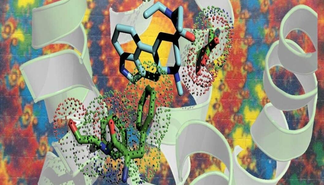 Hallusinasjon? En kunstnerisk fremstilling av LSD (lyseblått) som vever seg inn i en serotoninreseptor (hvitt bånd). (Illustrasjon: Bryan Roth)