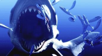 Hvorfor døde tidenes største hai ut?