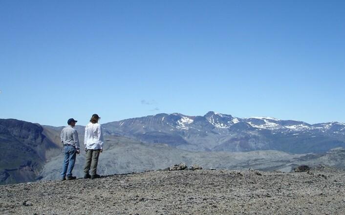 Sør-Grønland med utsikt mot et område med mye sodalitt i berggrunnen. (Foto: Henrik Friis)