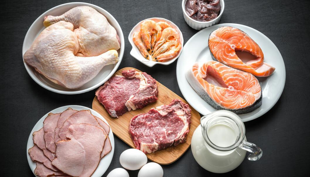 Vitamin B12 finnes bare i dyreprodukter som kjøtt, meieriprodukter og egg. For lite B12 hos gravide kan være dramatisk for fosteret. (Foto: Shutterstock / NTB scanpix)