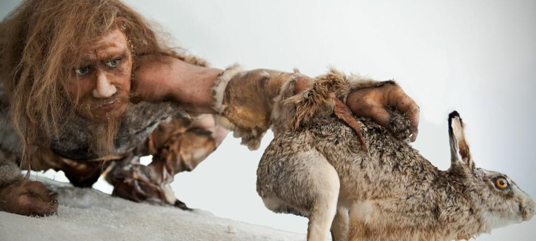 Hvilke dyr sto på menyen for hundretusenvis av år siden?