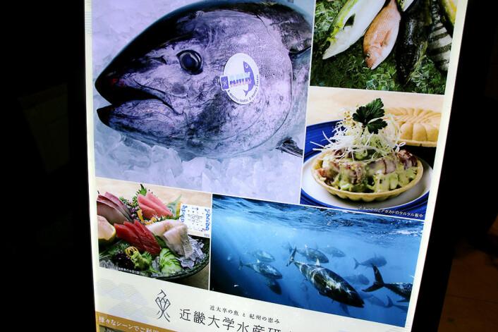 Menyen fra Kindai University restaurant i Tokyos snobbete Ginzadistrikt: Hver eneste blåfinnet tunfisk fra oppdrettsanlegget ved universitetet, blir merket med et stempel (se bildet øverst til venstre). (Foto: Anne Sliper Midling)