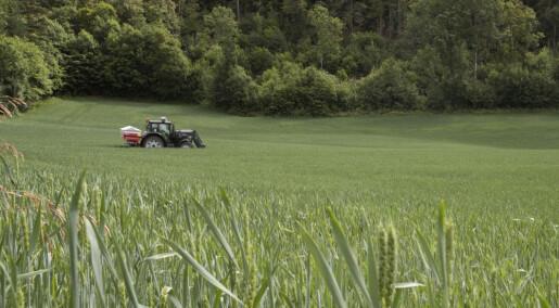 Kan lavt inntak av selen fra mat og dyrefôr gi dårligere helse hos mennesker og husdyr?