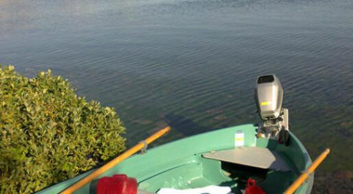 Ørret, røye og sik kan forsvinne fra innsjøene i nord