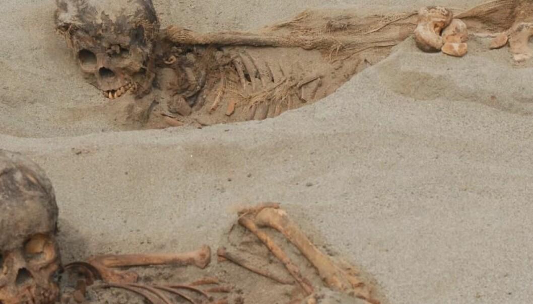 Forskere finner restene etter 140 ofrede barn i Peru