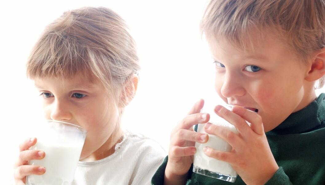 Norske myndigheter anbefaler at vi drikker melk, spiser frukt og bær, fisk og moderate mengder kjøtt. La folk få spise dette i fred, skriver Terese Glemminge Arnesen fra melk.no. (Foto: Colourbox)